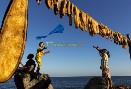 Suszenie mięsa wieloryba na wyspie Lamalera, Indonezja